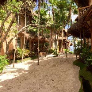 Beach paradise at Alaya Hotel