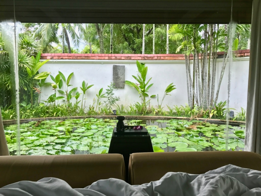 Wake up with this view